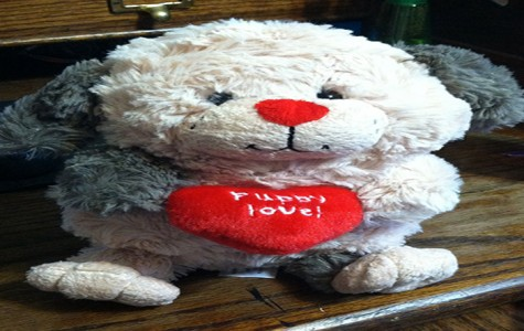 Top 10 Valentines Day gifts for her.
