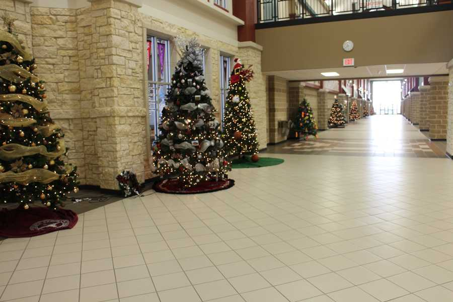 Holiday Trees In Hallway