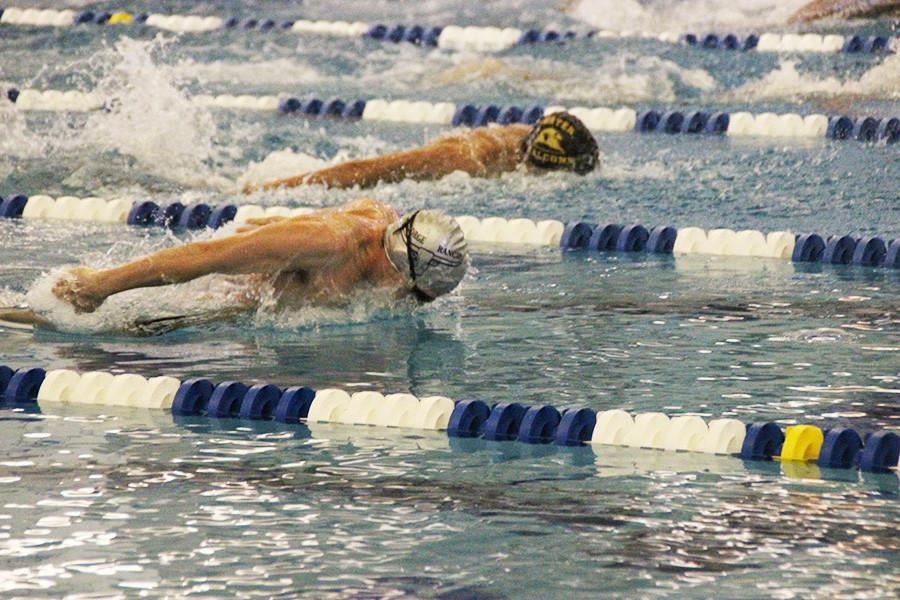 Senior David Kvinta extends his lead in the butterfly race.
