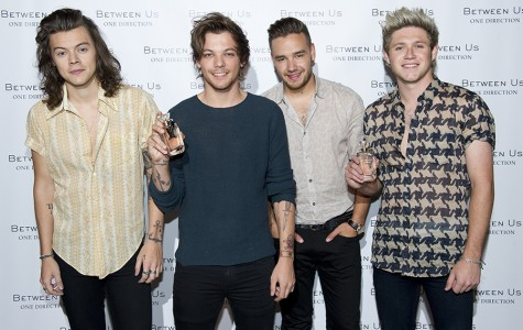 The four boys of One Direction before their hiatus and were still together for cute group photos.