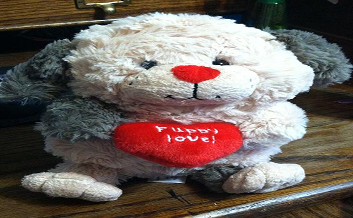 A fluffy puppy for Valentines day