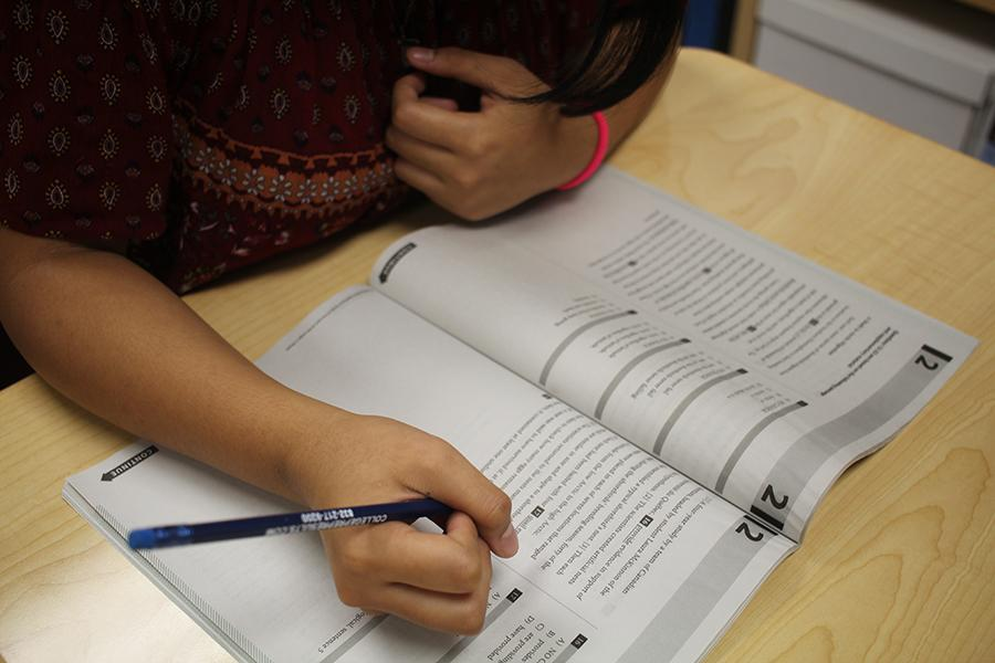 Students take advantage of training materials.