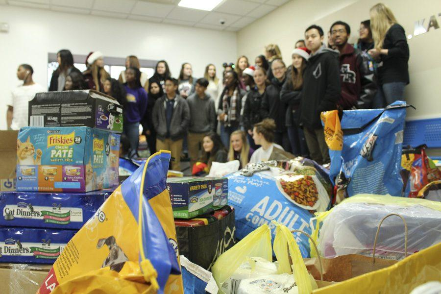 Group photo of the HOSA members that helped bring in the donations for the pet shelter.