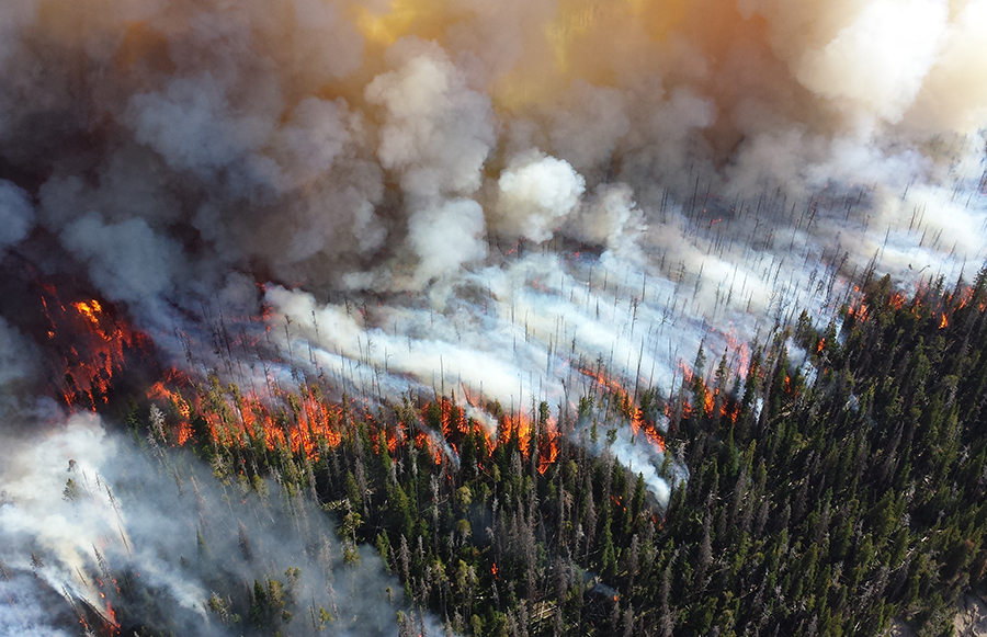 Are wildfires a result of climate change? https://www.flickr.com/photos/npsclimatechange/1450328713