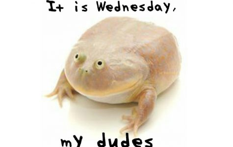 The Spectacular Wednesday Frog