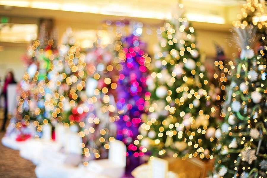 https://cdn.pixabay.com/photo/2016/11/14/16/20/christmas-trees-1823943_960_720.jpg