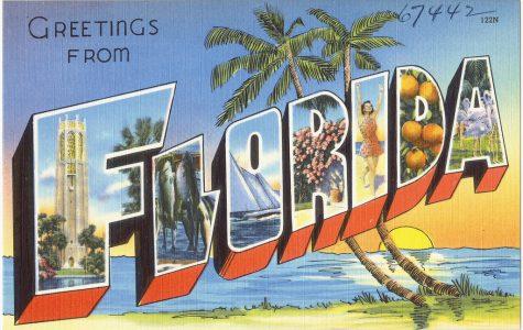 Florida serial killer.