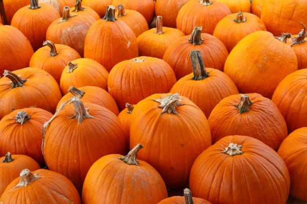 https://www.publicdomainpictures.net/en/view-image.php?image=195132&picture=orange-pumpkins-background