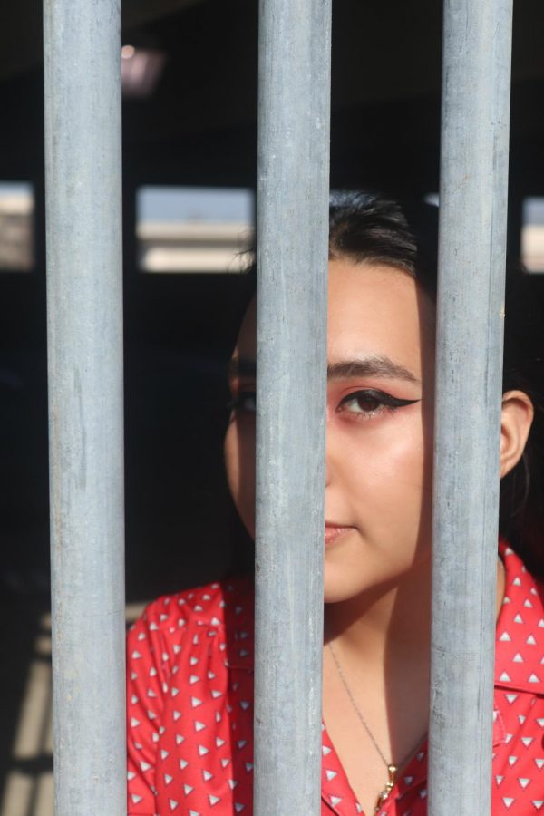 The bars frame her eye which centers the focus on her eye.