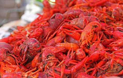 All You Can Eat Crawfish Boil (21+)