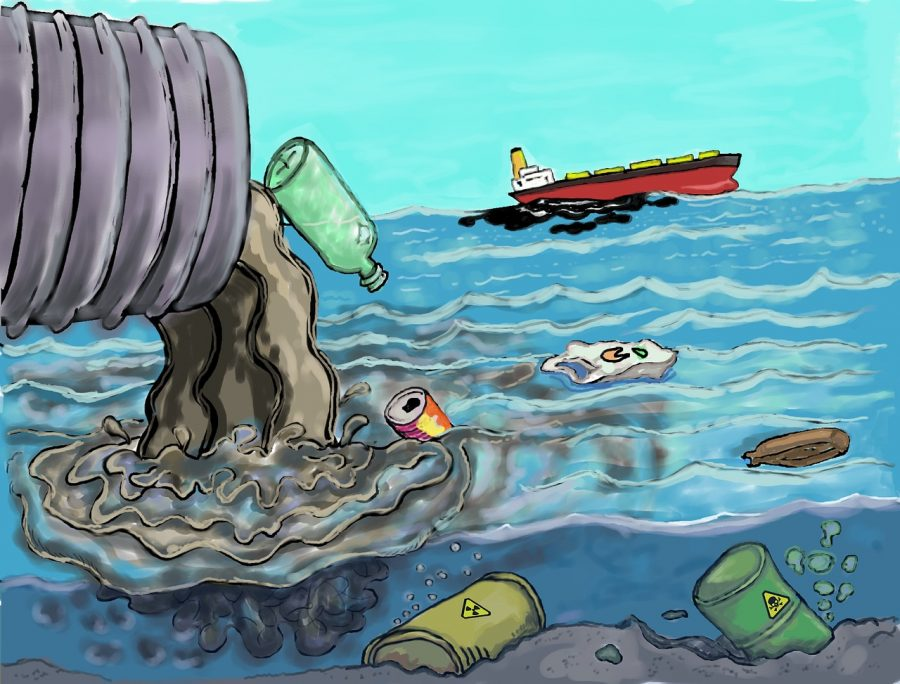 Trash Littered in the ocean that is effecting the ocean and its aquatic animals.