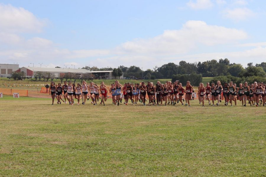As the gun went off to begin the race, the Varsity Girls pushed to the front to start off strong.