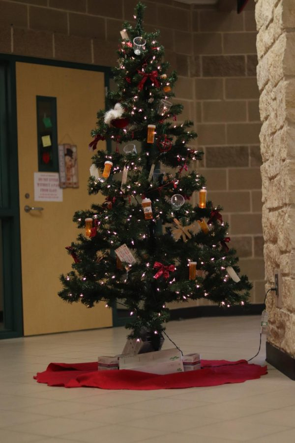 Check out the tree from the clinic.