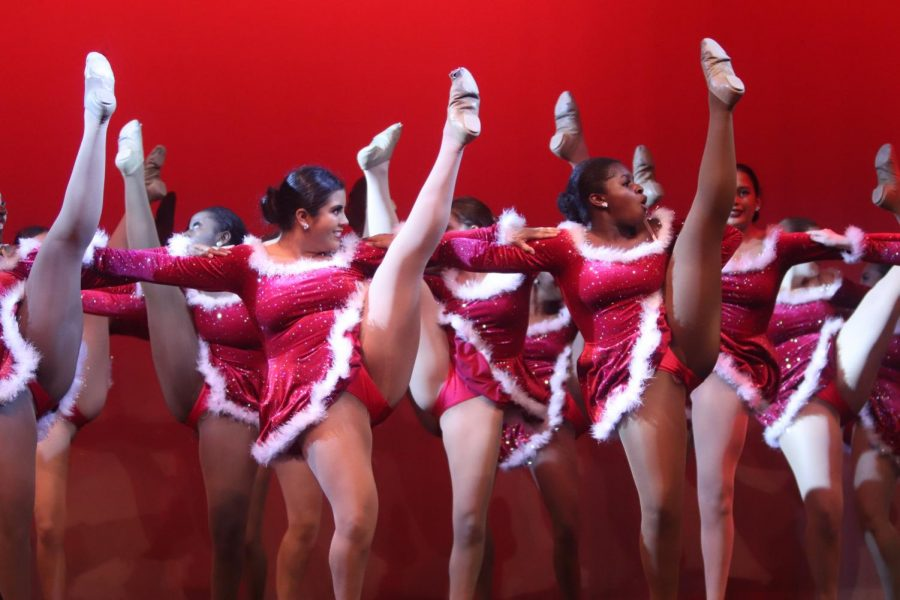 High kicking Lariettes perform at the Winter Show.